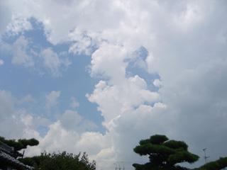 natsugumo